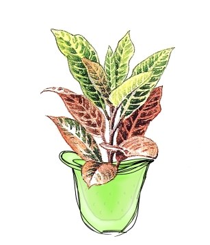 My initial hanging planter sketch